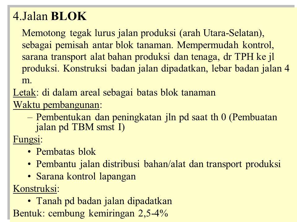 4.Jalan BLOK Memotong tegak lurus jalan produksi (arah Utara-Selatan), sebagai pemisah antar blok tanaman.