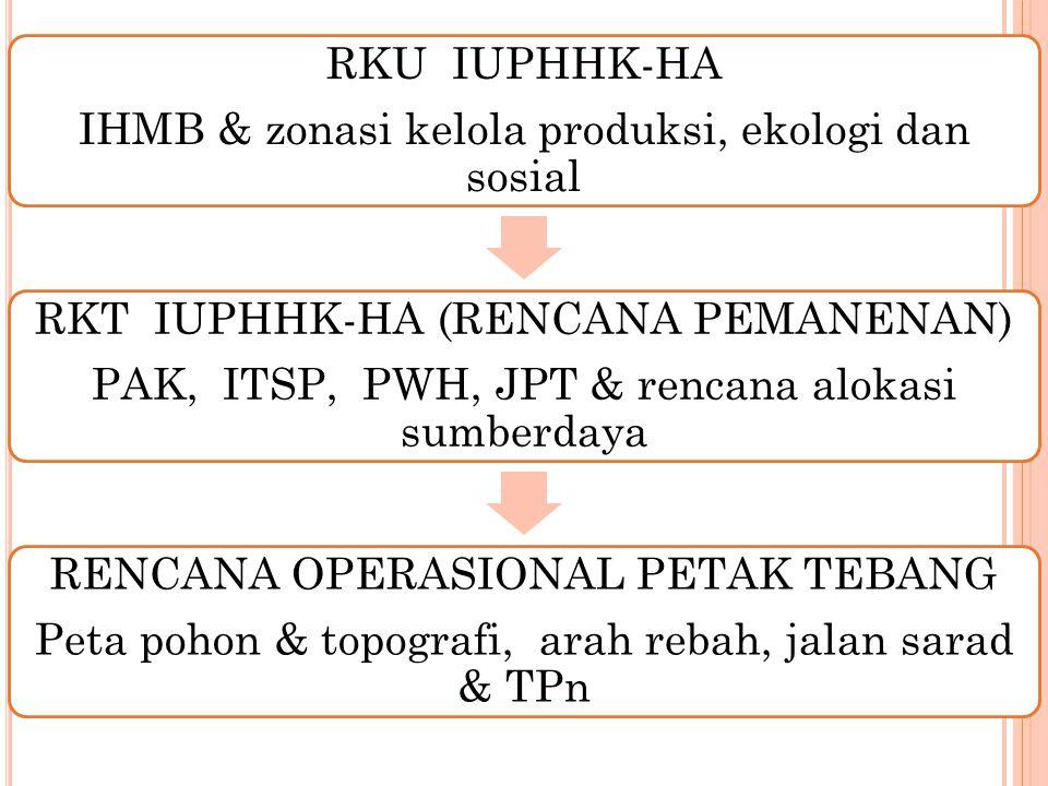 P ERENCANAAN P EMANENAN K AYU Penentuan areal efektif pemanenan Penentuan blok RKT dan petak tebang Rencana produksi tebangan (JPT) Rencana jalan sarad dan TPn Rencana penggunaan alat dan tenaga kerja 12