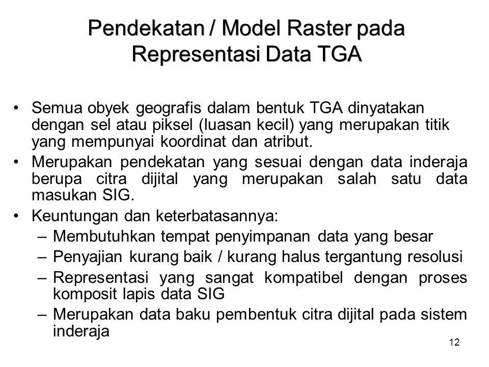 12 Pendekatan / Model Raster pada Representasi Data TGA Semua obyek geografis dalam bentuk TGA dinyatakan dengan sel atau piksel (luasan kecil) yang m