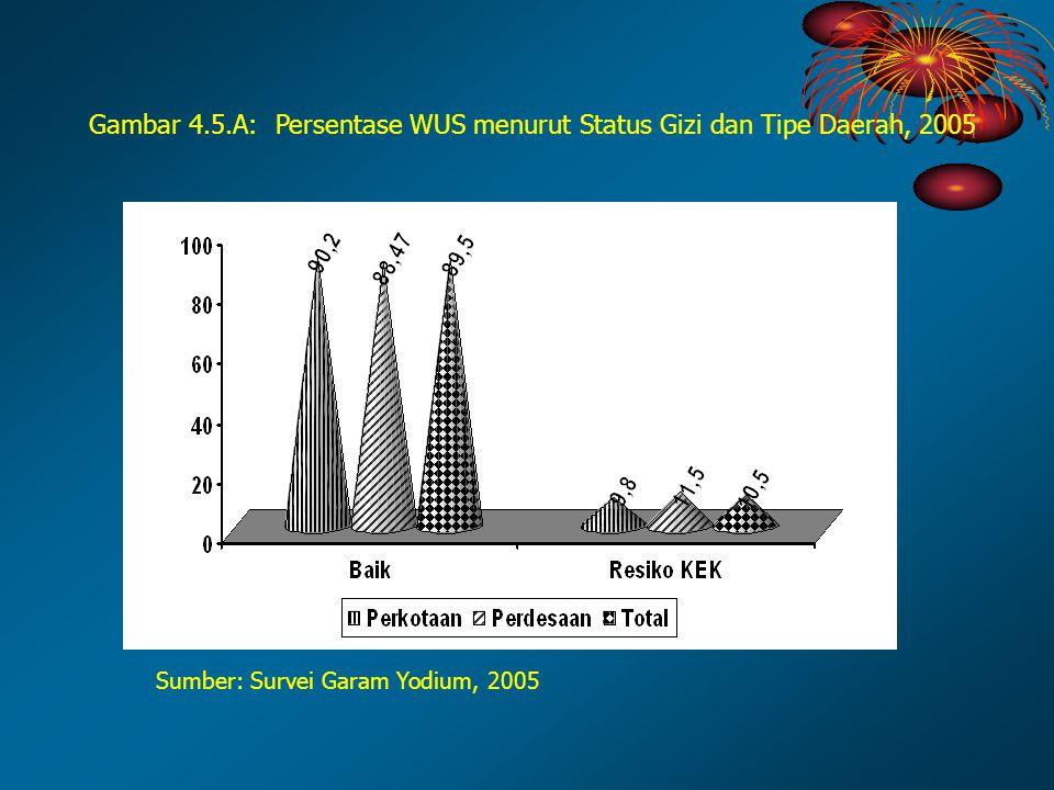 Sumber: Survei Garam Yodium, 2005 Gambar 4.5.A: Persentase WUS menurut Status Gizi dan Tipe Daerah, 2005