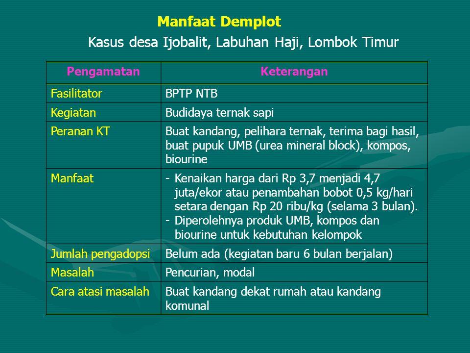 Kasus desa Ijobalit, Labuhan Haji, Lombok Timur PengamatanKeterangan FasilitatorBPTP NTB KegiatanBudidaya ternak sapi Peranan KTBuat kandang, pelihara