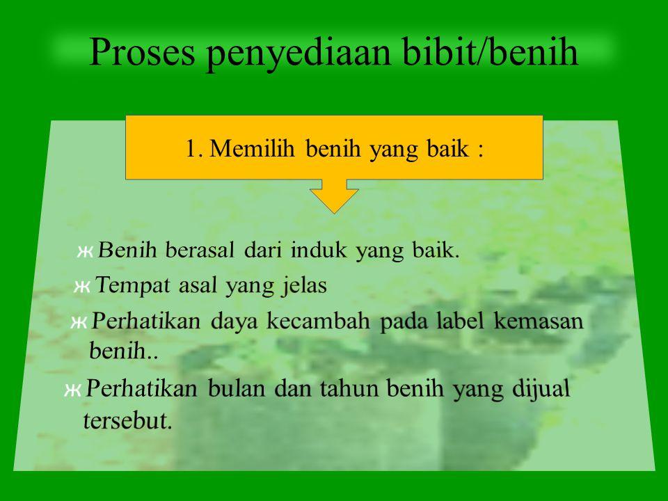 Proses penyediaan bibit/benih 1.Memilih benih yang baik :