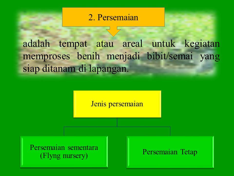 adalah tempat atau areal untuk kegiatan memproses benih menjadi bibit/semai yang siap ditanam di lapangan. Jenis persemaian Persemaian sementara (Flyn