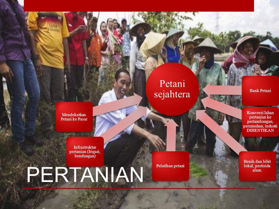 Intensifikasi & Ekstensifikasi Lahan Pertanian