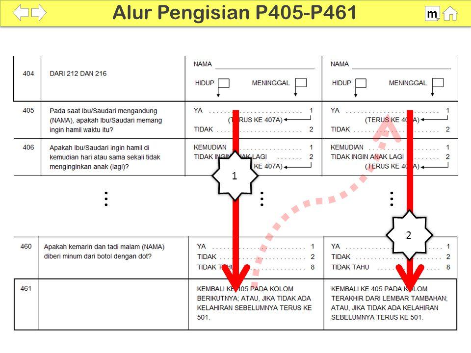 1 2... 100% SDKI 2012 Alur Pengisian P405-P461 m