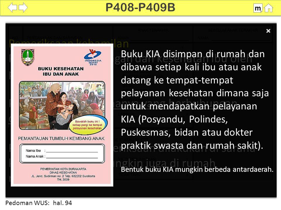100% P410 m Pedoman WUS: hal. 94