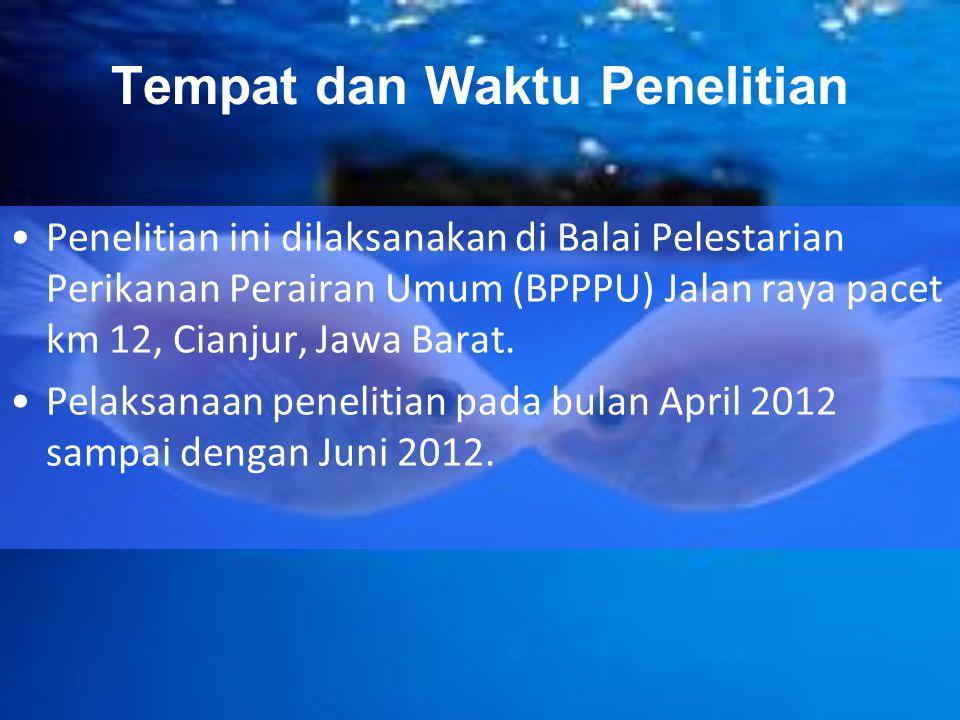 Tempat dan Waktu Penelitian Penelitian ini dilaksanakan di Balai Pelestarian Perikanan Perairan Umum (BPPPU) Jalan raya pacet km 12, Cianjur, Jawa Bar