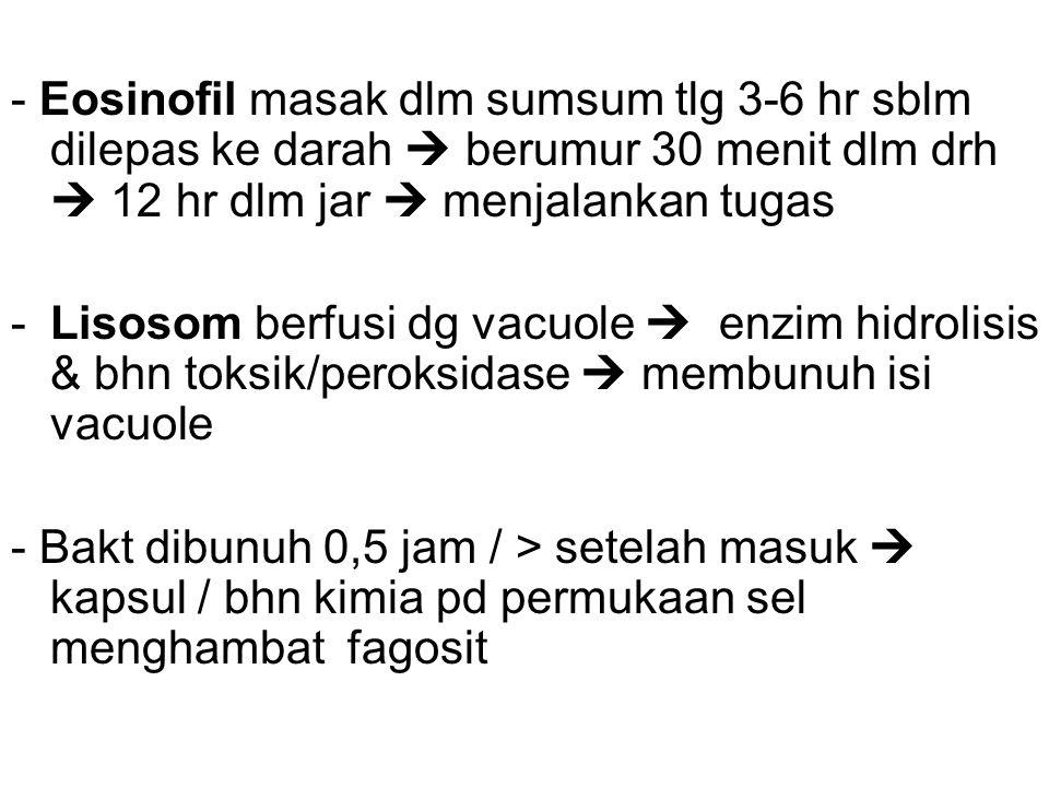 - Eosinofil masak dlm sumsum tlg 3-6 hr sblm dilepas ke darah  berumur 30 menit dlm drh  12 hr dlm jar  menjalankan tugas -Lisosom berfusi dg vacuole  enzim hidrolisis & bhn toksik/peroksidase  membunuh isi vacuole - Bakt dibunuh 0,5 jam / > setelah masuk  kapsul / bhn kimia pd permukaan sel menghambat fagosit