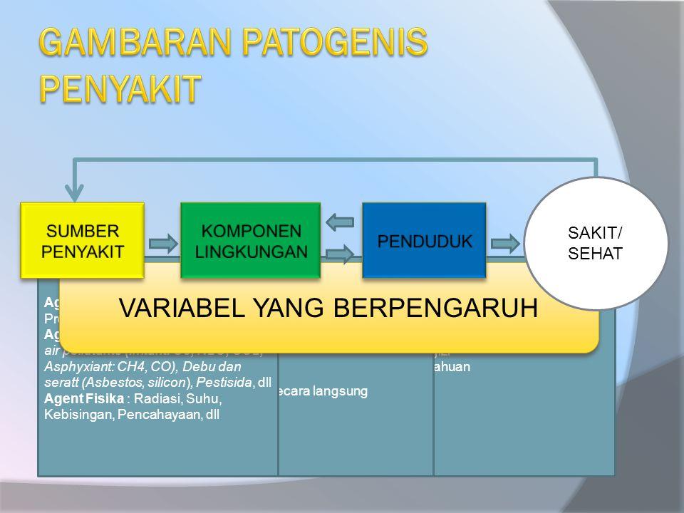- Perilaku - Status gizi - Pengetahuan - dll - Udara/Tanah - Air - Makanan - Binatang - Manusia / secara langsung Agent Biologis: Bakteri, Virus, Jamur, Protozoa, Amoeba, dll Agent Kimia : Logam berat (Pb, Hg), air pollutants (Irritant: O3, N2O, SO2, Asphyxiant: CH4, CO), Debu dan seratt (Asbestos, silicon), Pestisida, dll Agent Fisika : Radiasi, Suhu, Kebisingan, Pencahayaan, dll VARIABEL YANG BERPENGARUH SAKIT/ SEHAT