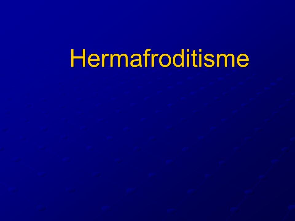 Kromatin Y 1970 ----- Casperson Yaitu bintik berfloressensi dalam inti sel berkromosom Y.