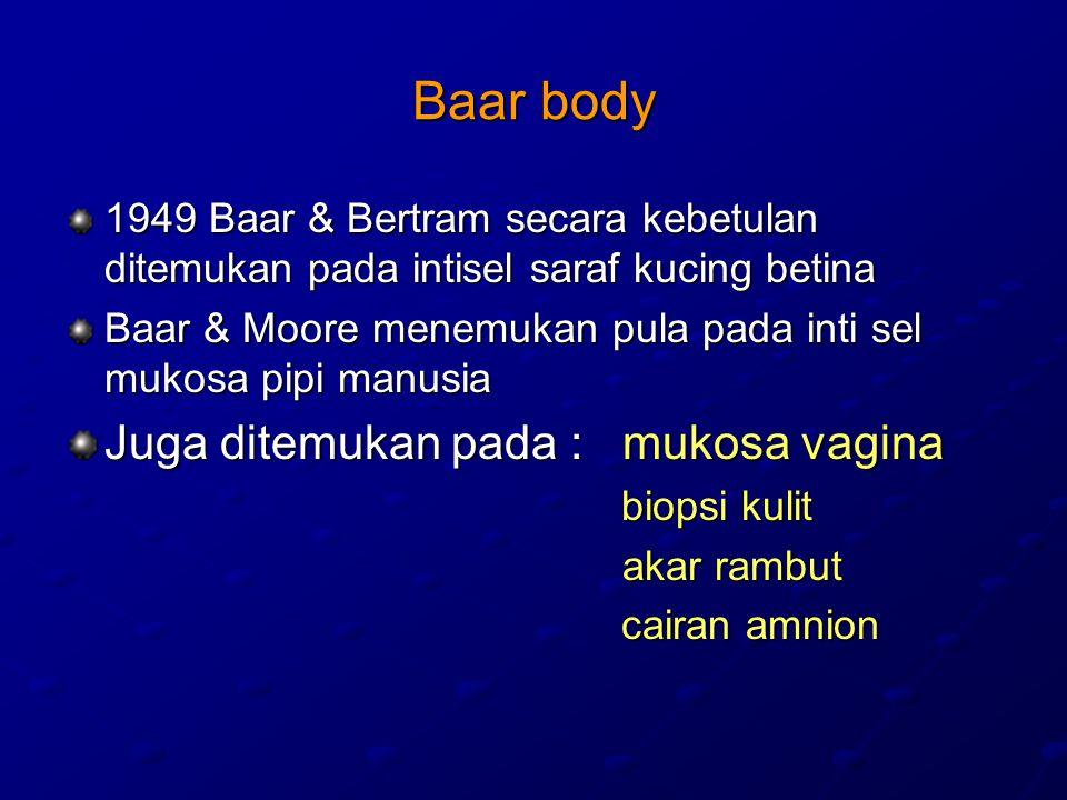 Baar body 1949 Baar & Bertram secara kebetulan ditemukan pada intisel saraf kucing betina Baar & Moore menemukan pula pada inti sel mukosa pipi manusia Juga ditemukan pada : mukosa vagina biopsi kulit biopsi kulit akar rambut akar rambut cairan amnion cairan amnion