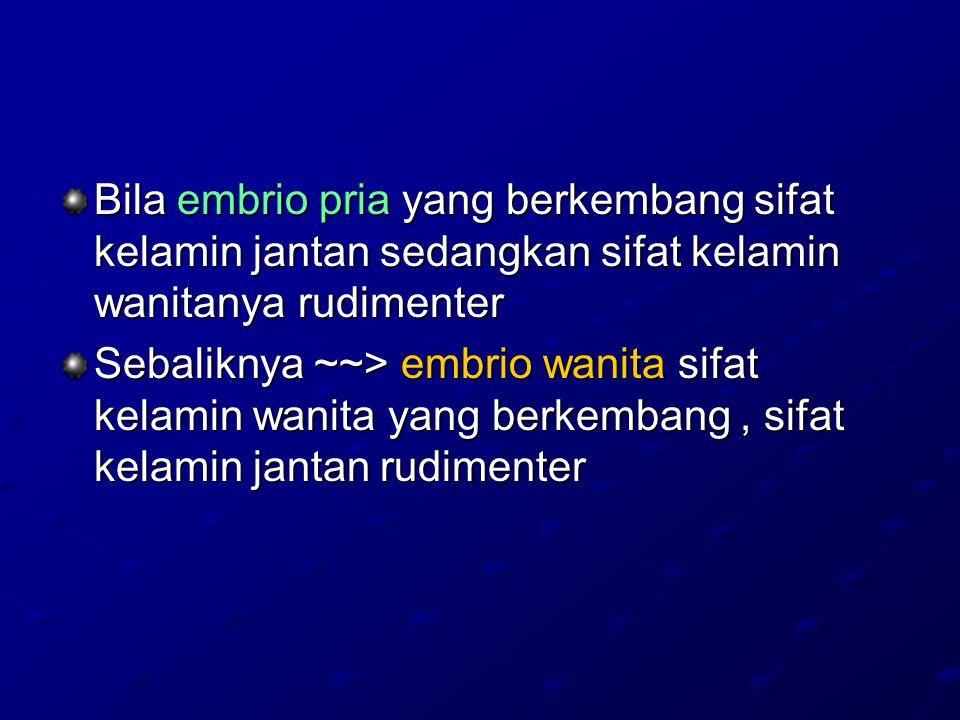 Bila embrio pria yang berkembang sifat kelamin jantan sedangkan sifat kelamin wanitanya rudimenter Sebaliknya ~~> embrio wanita sifat kelamin wanita yang berkembang, sifat kelamin jantan rudimenter