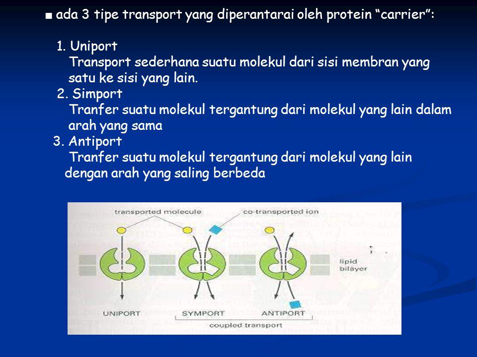 """■ ada 3 tipe transport yang diperantarai oleh protein """"carrier"""": 1. Uniport Transport sederhana suatu molekul dari sisi membran yang satu ke sisi yang"""