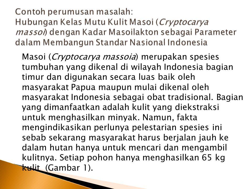 Masoi (Cryptocarya massoia) merupakan spesies tumbuhan yang dikenal di wilayah Indonesia bagian timur dan digunakan secara luas baik oleh masyarakat P