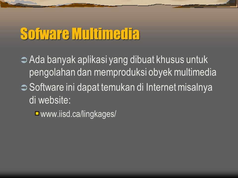 Sofware Multimedia  Ada banyak aplikasi yang dibuat khusus untuk pengolahan dan memproduksi obyek multimedia  Software ini dapat temukan di Internet misalnya di website: www.iisd.ca/lingkages/