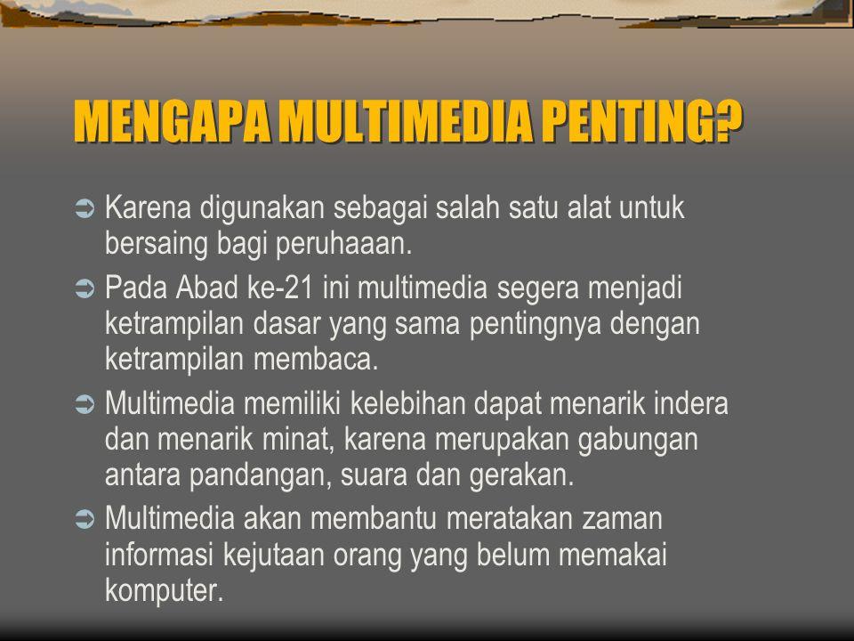 MENGAPA MULTIMEDIA PENTING.