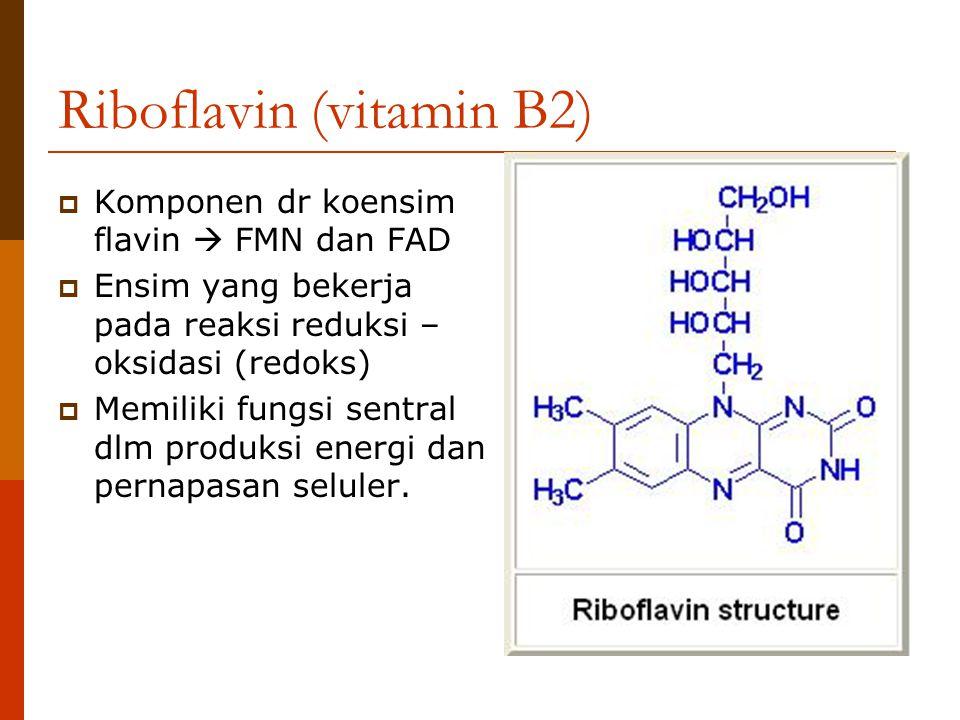 Riboflavin (vitamin B2)  Komponen dr koensim flavin  FMN dan FAD  Ensim yang bekerja pada reaksi reduksi – oksidasi (redoks)  Memiliki fungsi sent
