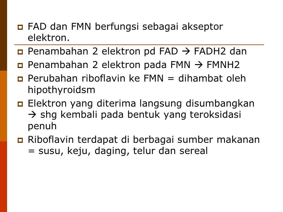  FAD dan FMN berfungsi sebagai akseptor elektron.  Penambahan 2 elektron pd FAD  FADH2 dan  Penambahan 2 elektron pada FMN  FMNH2  Perubahan rib