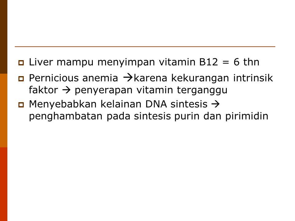  Liver mampu menyimpan vitamin B12 = 6 thn  Pernicious anemia  karena kekurangan intrinsik faktor  penyerapan vitamin terganggu  Menyebabkan kela