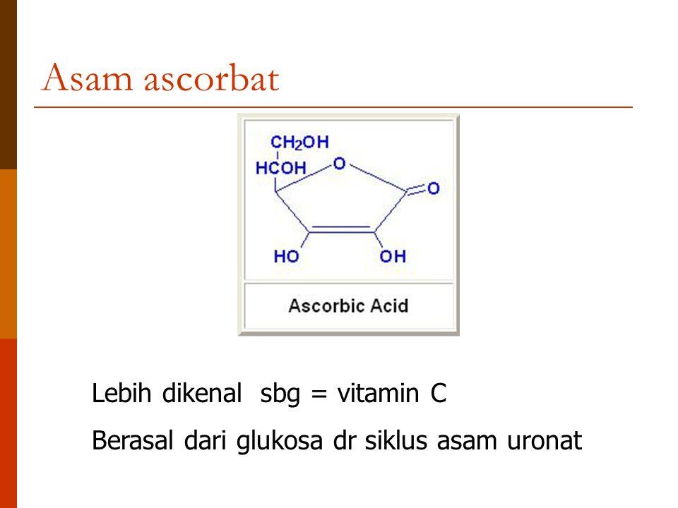Asam ascorbat Lebih dikenal sbg = vitamin C Berasal dari glukosa dr siklus asam uronat