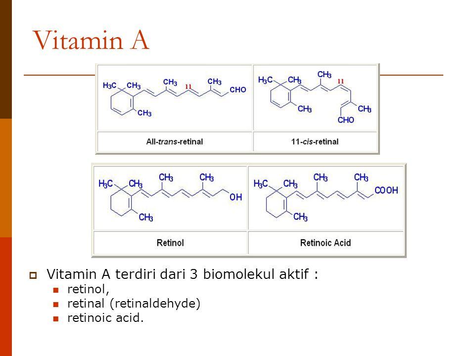 Vitamin A  Vitamin A terdiri dari 3 biomolekul aktif : retinol, retinal (retinaldehyde) retinoic acid.