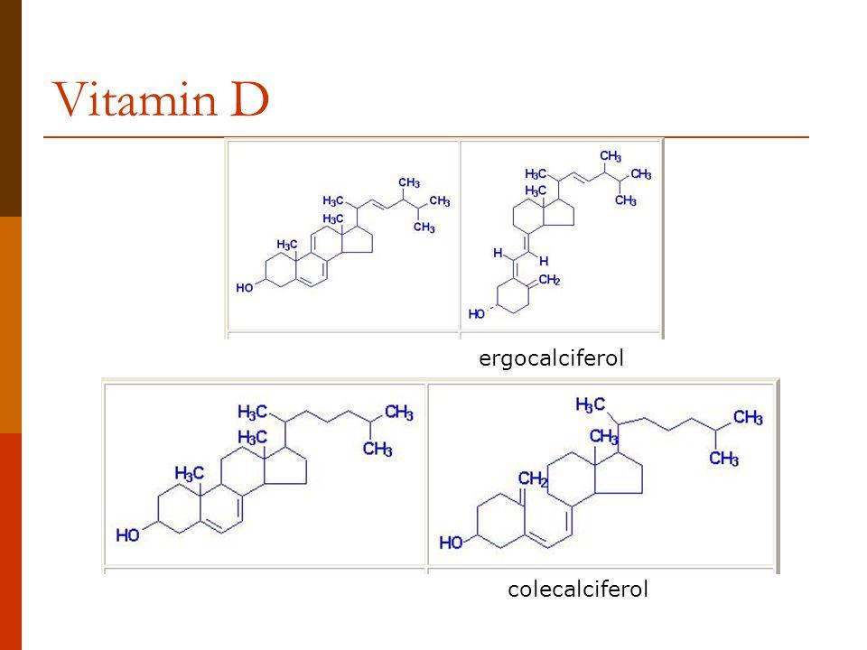 Vitamin D colecalciferol ergocalciferol