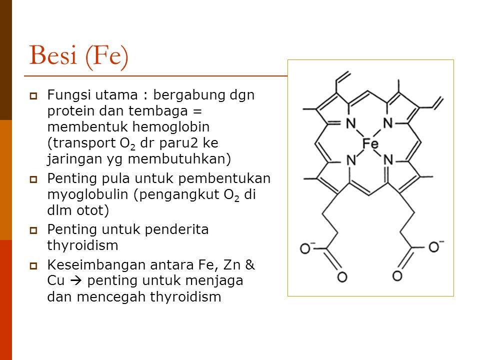 Besi (Fe)  Fungsi utama : bergabung dgn protein dan tembaga = membentuk hemoglobin (transport O 2 dr paru2 ke jaringan yg membutuhkan)  Penting pula