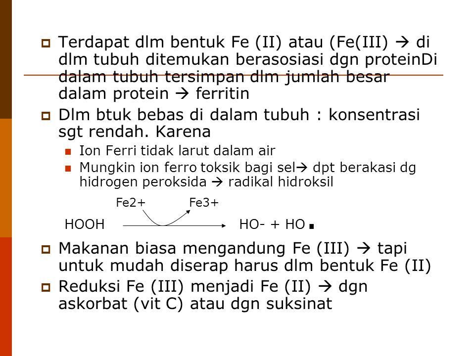  Terdapat dlm bentuk Fe (II) atau (Fe(III)  di dlm tubuh ditemukan berasosiasi dgn proteinDi dalam tubuh tersimpan dlm jumlah besar dalam protein 