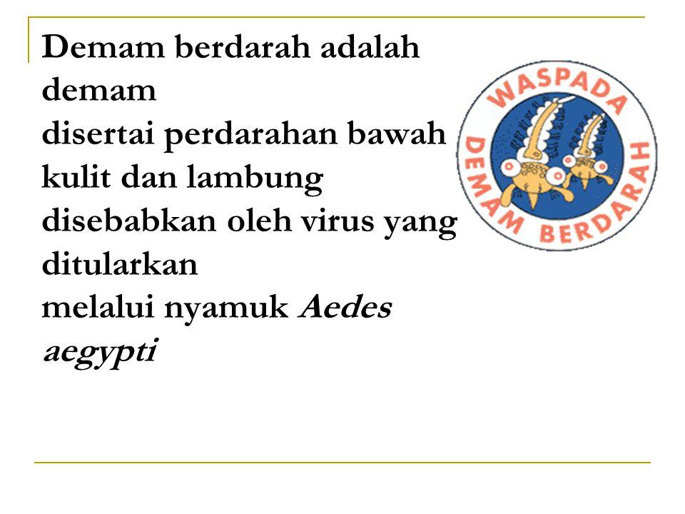 Ciri-ciri nyamuk Aedes aegypti : Badan kecil, warna hitam dengan bintik-bintik putihBadan kecil, warna hitam dengan bintik-bintik putih Hidup di dalam dan di sekitar rumahHidup di dalam dan di sekitar rumah Menggigit/menghisap darah pada siang hariMenggigit/menghisap darah pada siang hari Senang hinggap pada pakaian yang bergantungan dalam kamarSenang hinggap pada pakaian yang bergantungan dalam kamar Bersarang dan bertelur di genangan air jernih di dalam dan di sekitar rumah bukan di got/comberanBersarang dan bertelur di genangan air jernih di dalam dan di sekitar rumah bukan di got/comberan Di dalam rumah: bak mandi, tampayan, vas bungan, tempat minum burung, perangkap semut dan lain- lainDi dalam rumah: bak mandi, tampayan, vas bungan, tempat minum burung, perangkap semut dan lain- lain