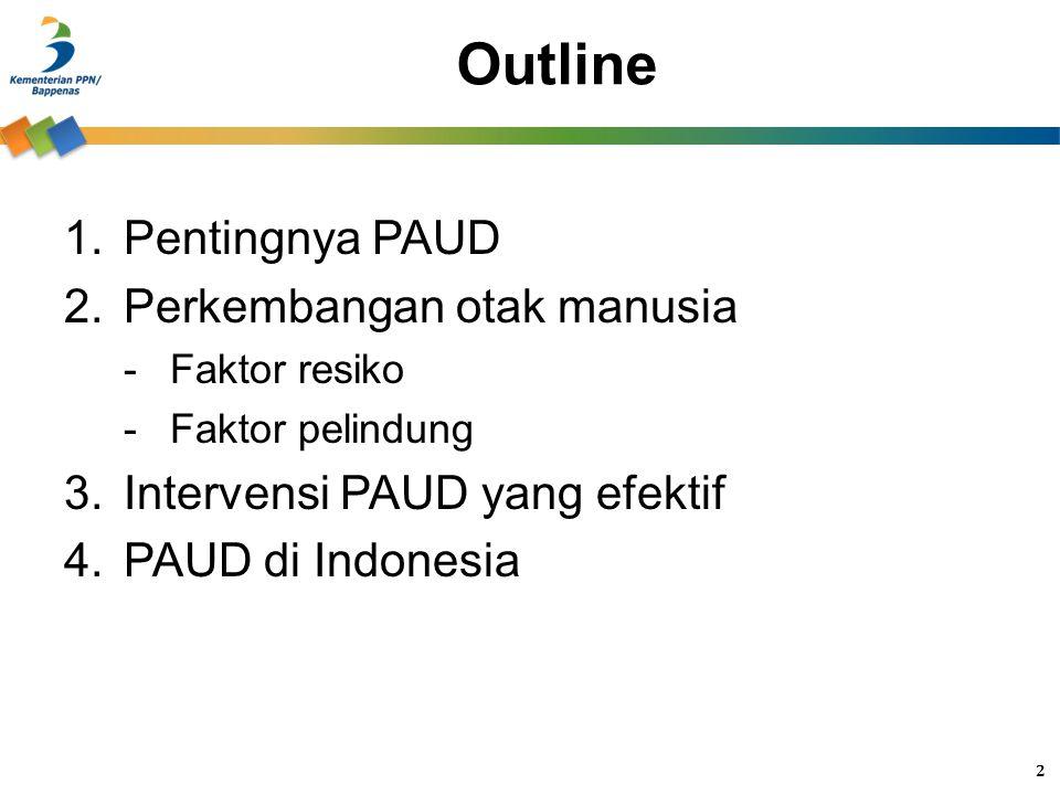 Outline 1.Pentingnya PAUD 2.Perkembangan otak manusia -Faktor resiko -Faktor pelindung 3.Intervensi PAUD yang efektif 4.PAUD di Indonesia 2