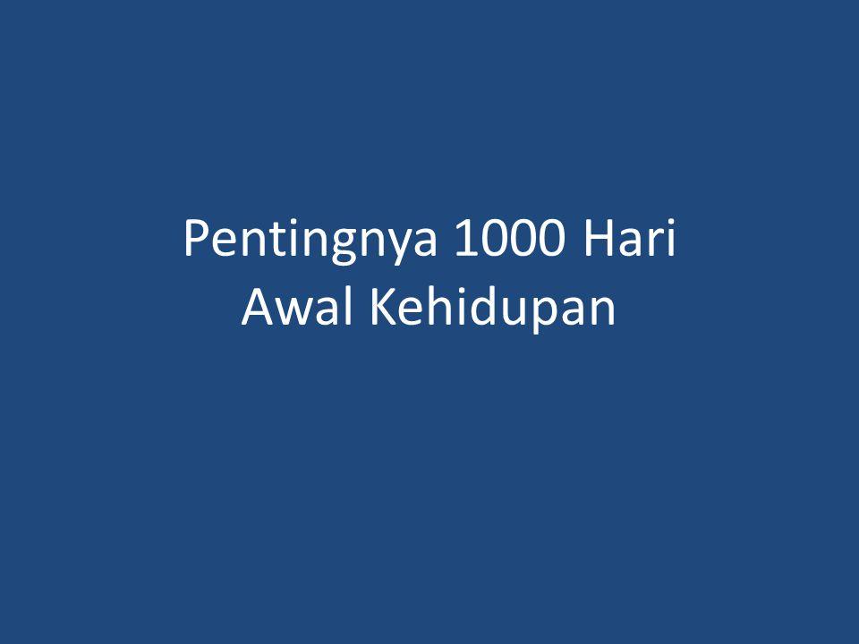 Pentingnya 1000 Hari Awal Kehidupan