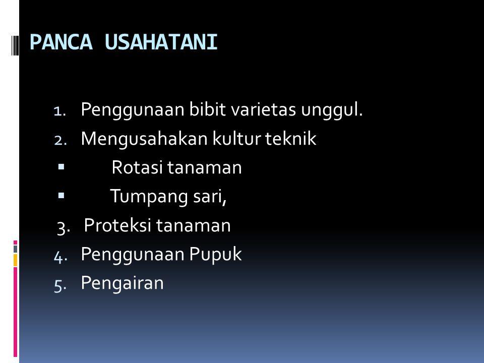 PANCA USAHATANI 1.Penggunaan bibit varietas unggul.