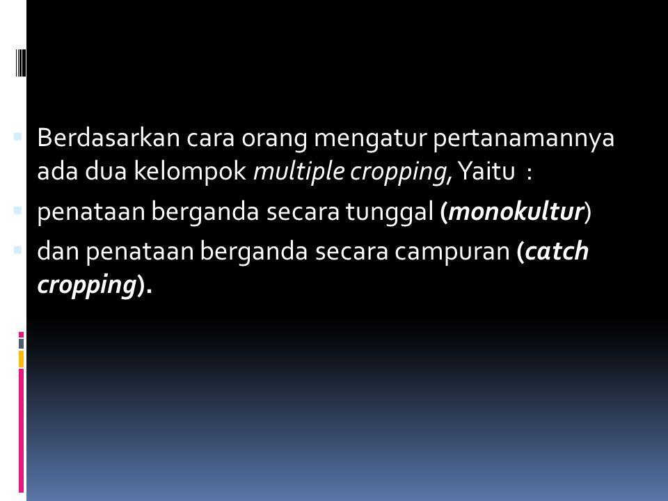  Berdasarkan cara orang mengatur pertanamannya ada dua kelompok multiple cropping, Yaitu :  penataan berganda secara tunggal (monokultur)  dan penataan berganda secara campuran (catch cropping).