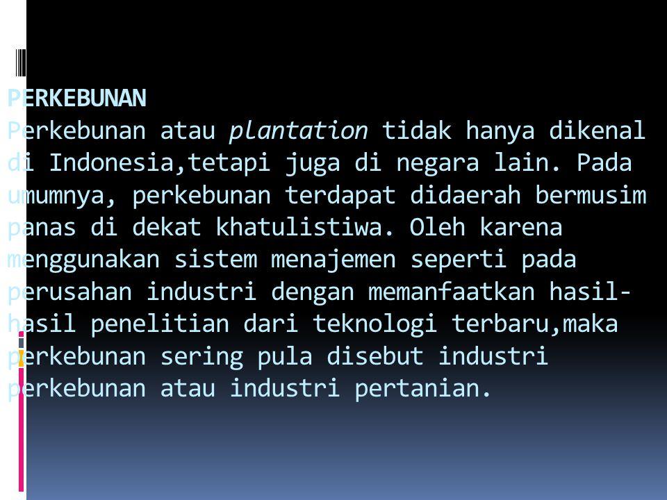 PERKEBUNAN Perkebunan atau plantation tidak hanya dikenal di Indonesia,tetapi juga di negara lain. Pada umumnya, perkebunan terdapat didaerah bermusim