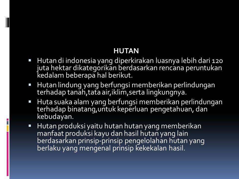 HUTAN  Hutan di indonesia yang diperkirakan luasnya lebih dari 120 juta hektar dikategorikan berdasarkan rencana peruntukan kedalam beberapa hal berikut.