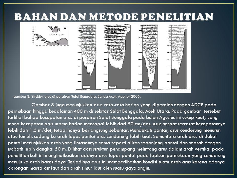 Penelitian kali ini berlangsung pada bulan Agustus, yang mana di atas wilayah perairan Indonesia merupakan periode musim timur (Wyrtki, 1961).