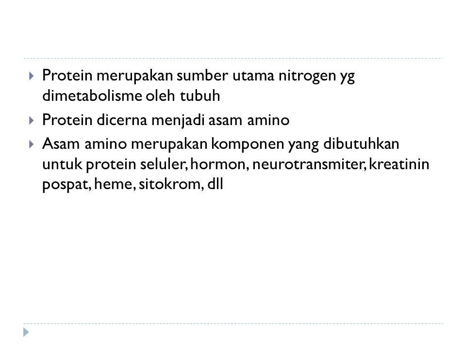  Protein merupakan sumber utama nitrogen yg dimetabolisme oleh tubuh  Protein dicerna menjadi asam amino  Asam amino merupakan komponen yang dibutuhkan untuk protein seluler, hormon, neurotransmiter, kreatinin pospat, heme, sitokrom, dll