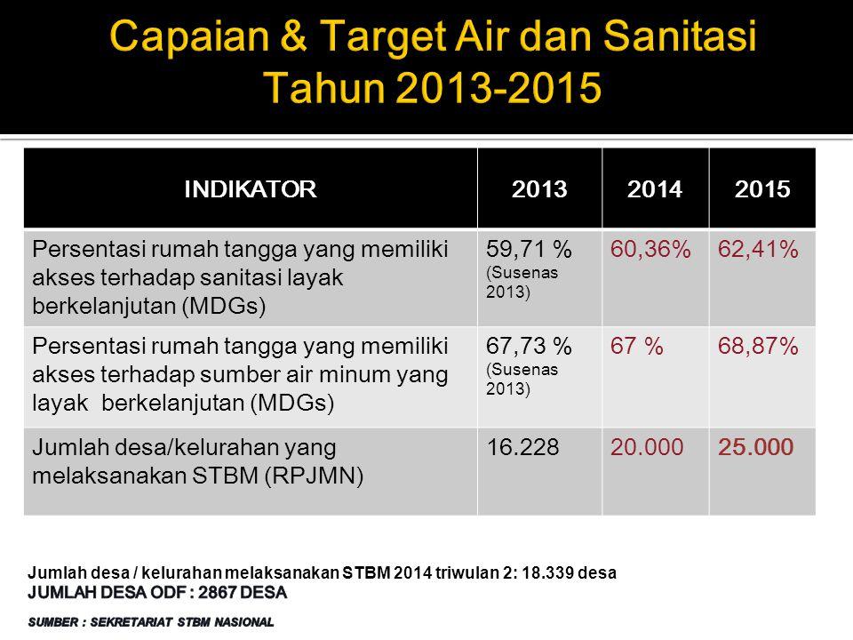 INDIKATOR201320142015 Persentasi rumah tangga yang memiliki akses terhadap sanitasi layak berkelanjutan (MDGs) 59,71 % (Susenas 2013) 60,36%62,41% Per