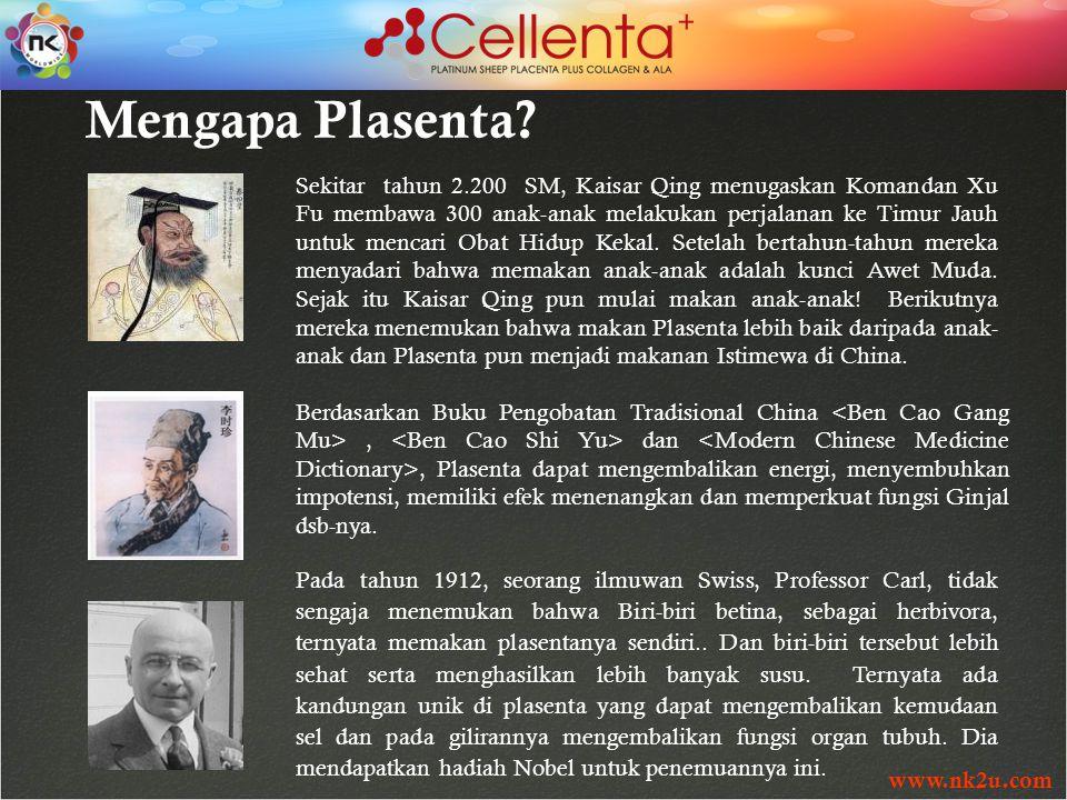 www.nk2u.com Mengapa Plasenta.
