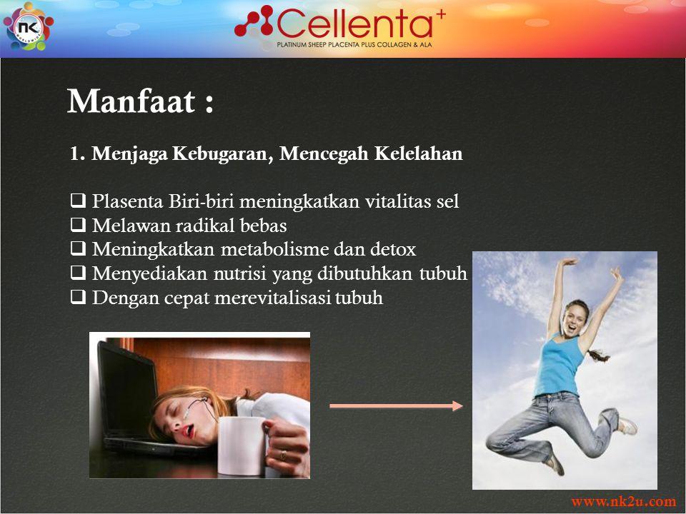 www.nk2u.com Manfaat : 1. Menjaga Kebugaran, Mencegah Kelelahan  Plasenta Biri-biri meningkatkan vitalitas sel  Melawan radikal bebas  Meningkatkan