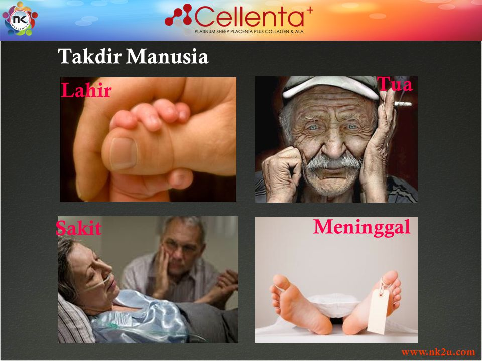 www.nk2u.com Takdir Manusia Lahir Tua Meninggal Sakit