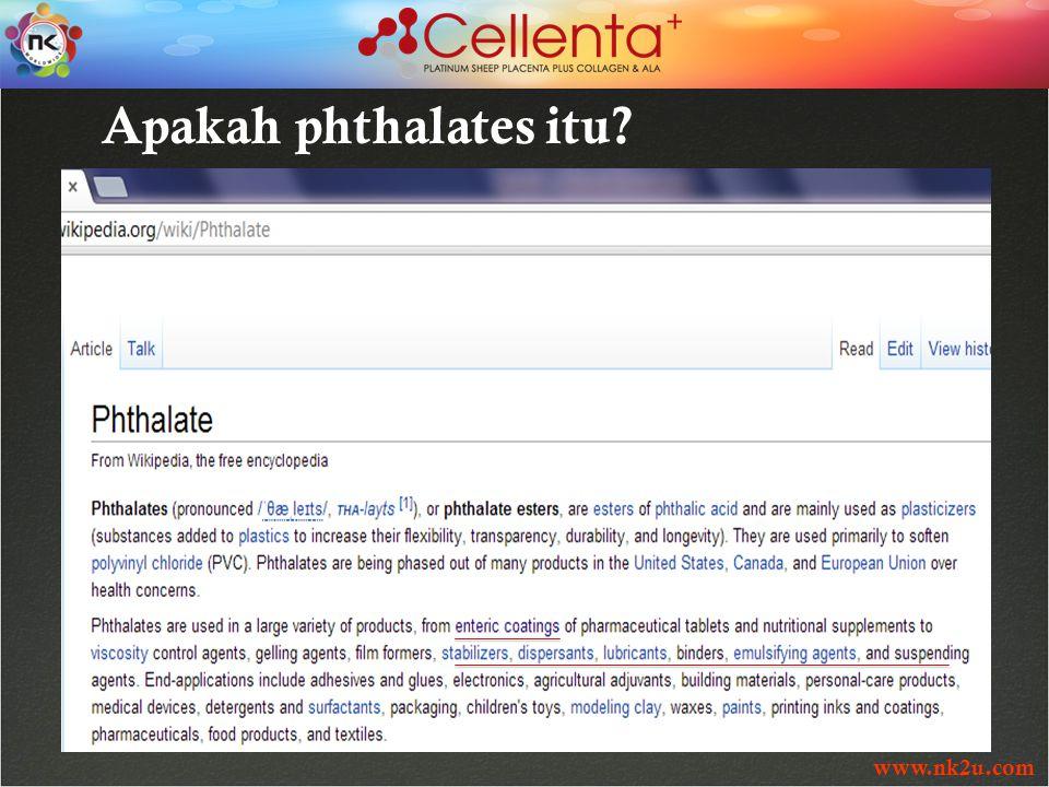 www.nk2u.com Apakah phthalates itu