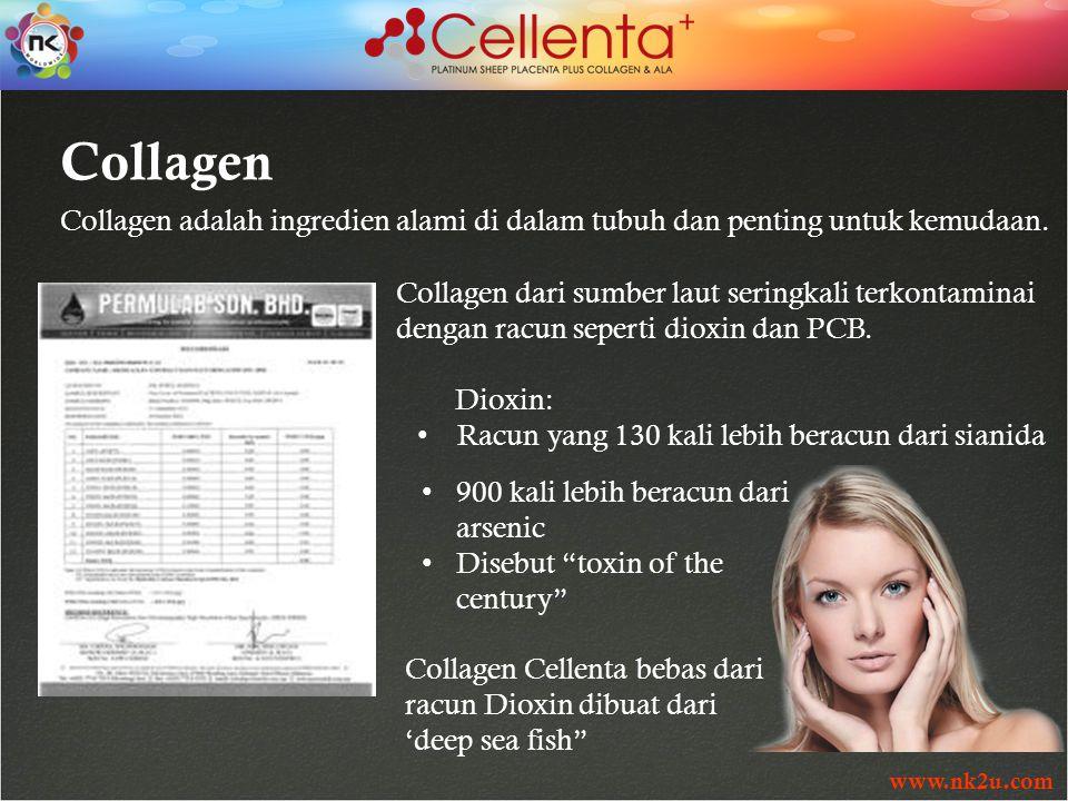 www.nk2u.com Collagen Collagen adalah ingredien alami di dalam tubuh dan penting untuk kemudaan.
