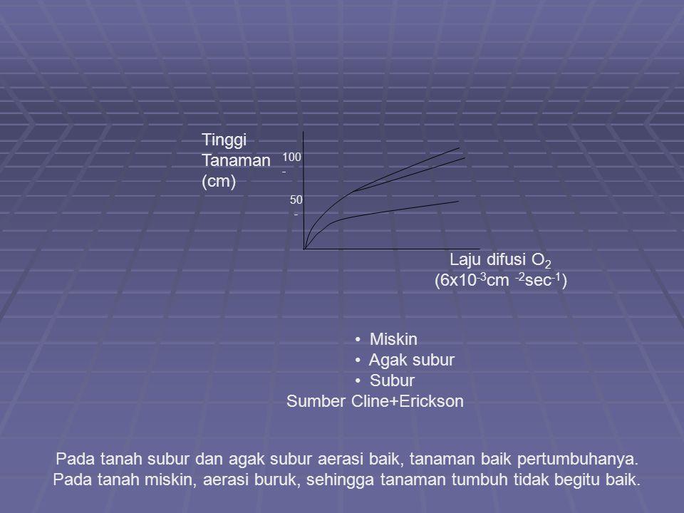 Tinggi Tanaman (cm) Laju difusi O 2 (6x10 -3 cm -2 sec -1 ) 50 - 100 - Miskin Agak subur Subur Sumber Cline+Erickson Pada tanah subur dan agak subur a