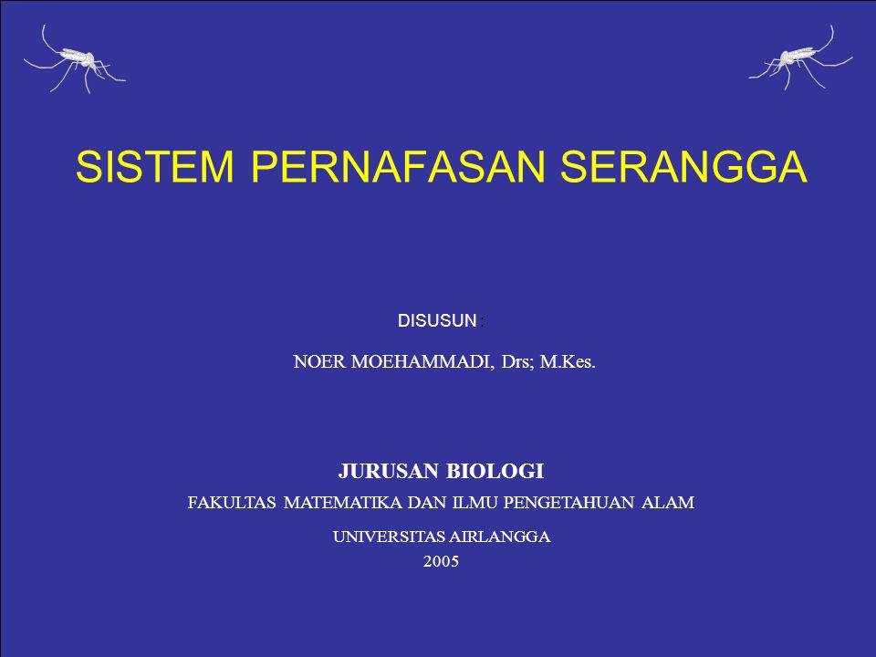 SISTEM PERNAFASAN SERANGGA DISUSUN : NOER MOEHAMMADI, Drs; M.Kes.