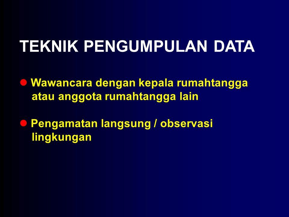 TEKNIK PENGUMPULAN DATA Wawancara dengan kepala rumahtangga atau anggota rumahtangga lain Pengamatan langsung / observasi lingkungan