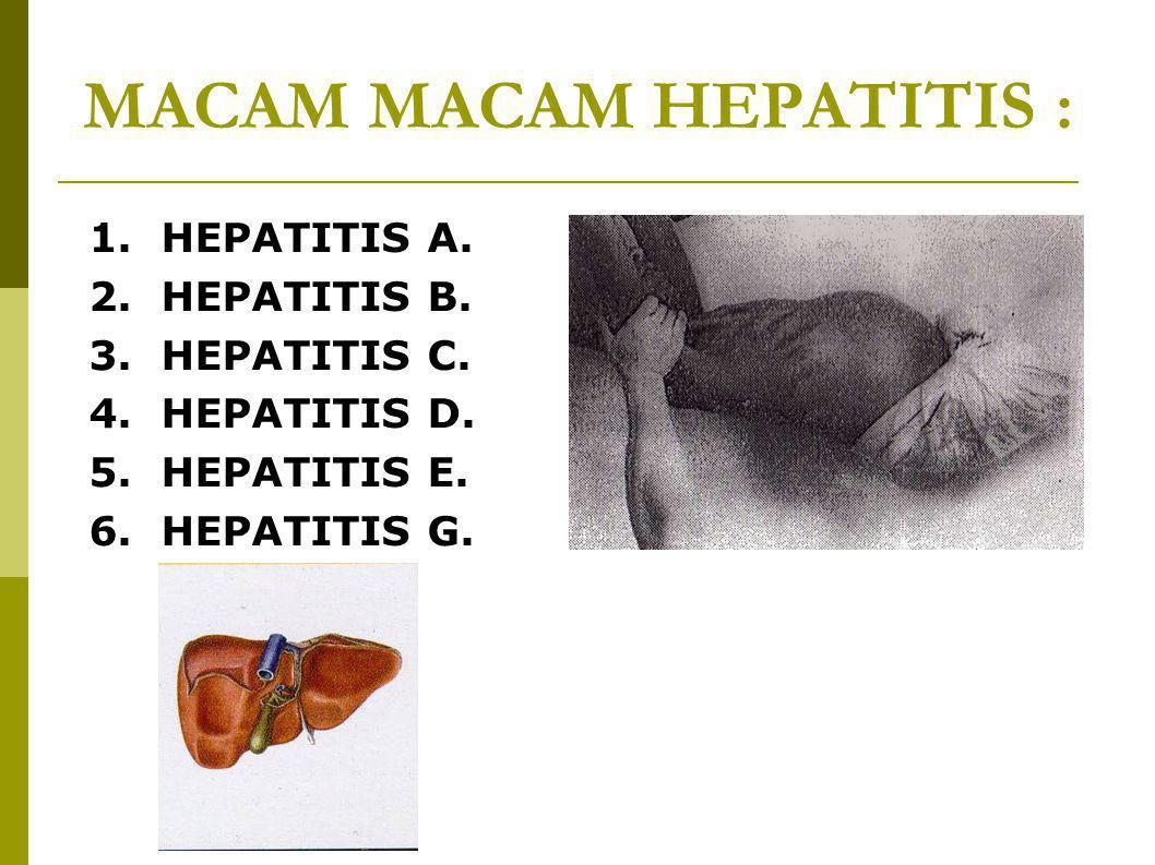 MACAM MACAM HEPATITIS : 1. HEPATITIS A. 2. HEPATITIS B. 3. HEPATITIS C. 4. HEPATITIS D. 5. HEPATITIS E. 6. HEPATITIS G.