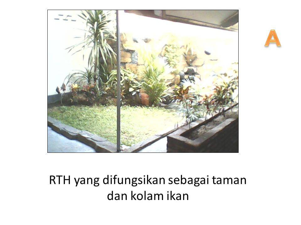 RTH yang difungsikan sebagai taman dan kolam ikan