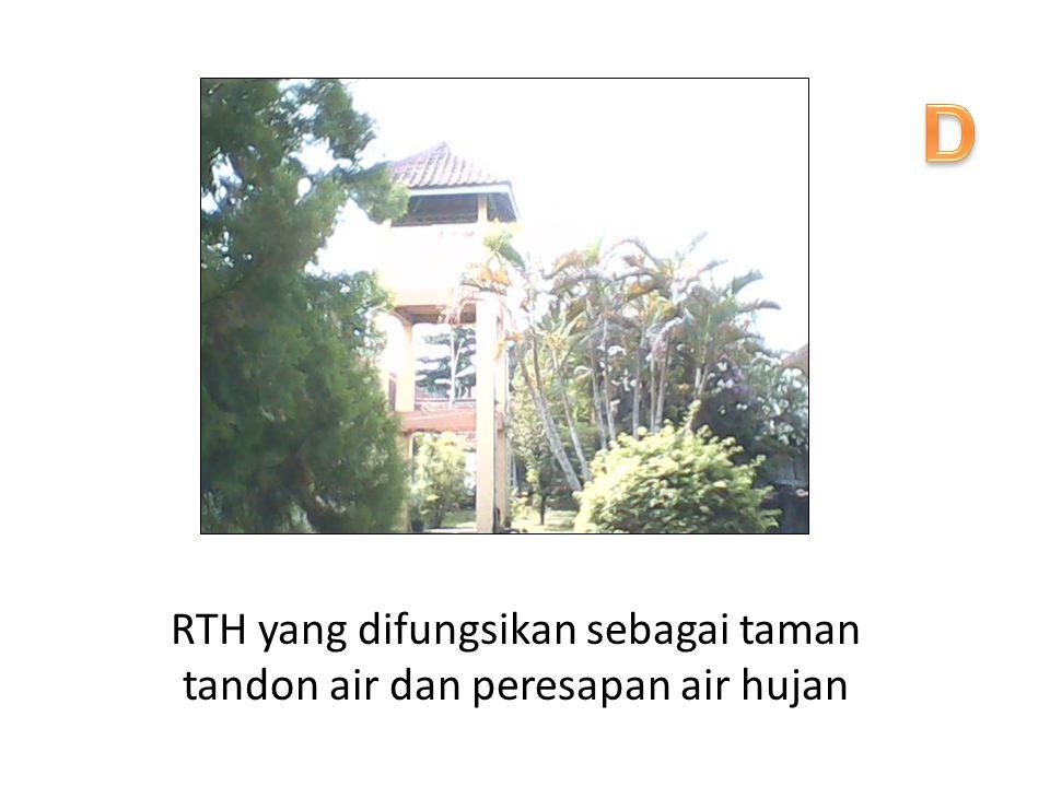 RTH yang difungsikan sebagai taman tandon air dan peresapan air hujan
