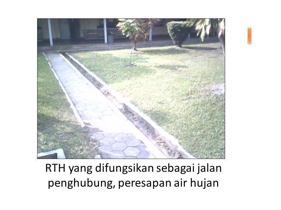 RTH yang difungsikan sebagai jalan penghubung, peresapan air hujan